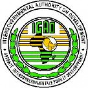 IGAD to hold heads of state consultative meeting on South Sudanese conflict