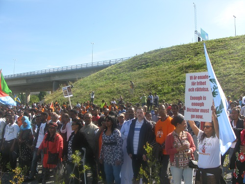 Stockholm Rally Against the PFDJ Festival 2015 (3)