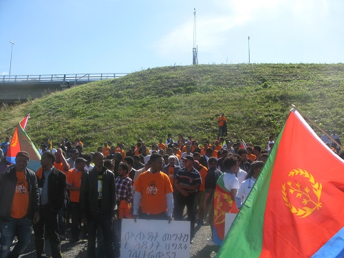 Stockholm Rally Against the PFDJ Festival 2015 (5)
